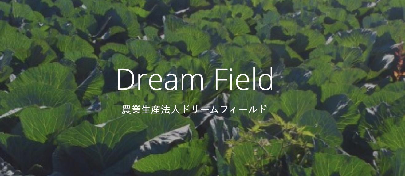 Dreamfield Inc.