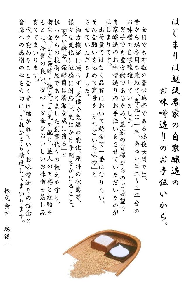 Echigoichi Corporation