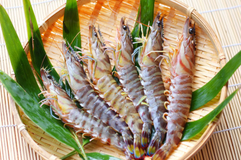Shrimp prawn (middle)