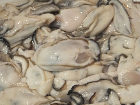 Oyster for heating (medium)